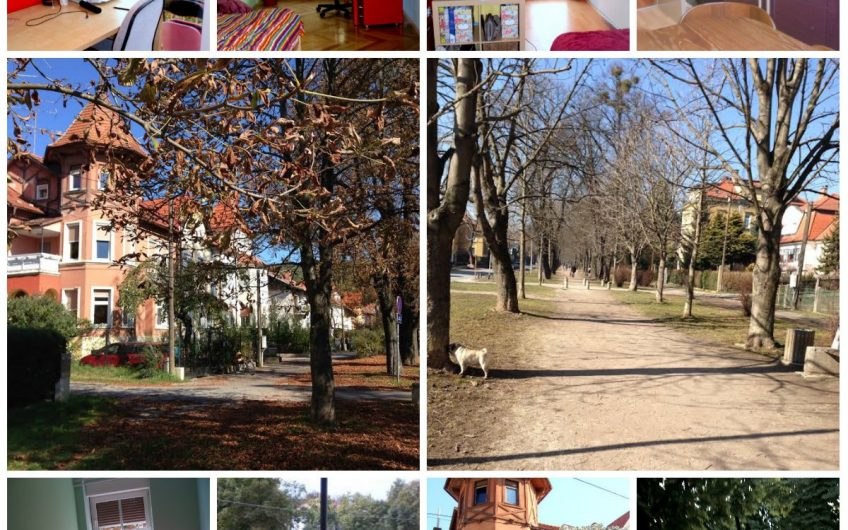 Enoposteljna soba na elitni lokaciji v Tomšičevem drevoredu ob mestnem parku