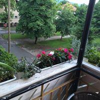 enoposteljna ali dvoposteljna velika soba z balkonom v centru Maribora, na mirni, zeleni, elitni lokaciji s pogledom na Tomšicev drevored
